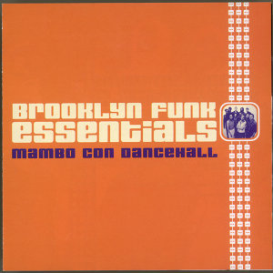 Brooklyn Funk Essentials 歌手頭像