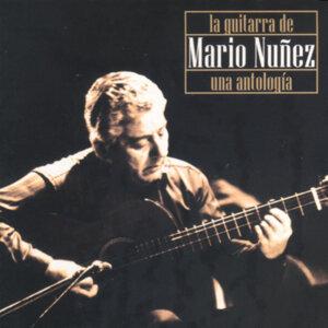 Mario Nuñez 歌手頭像
