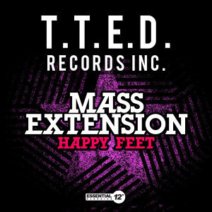 Mass Extension