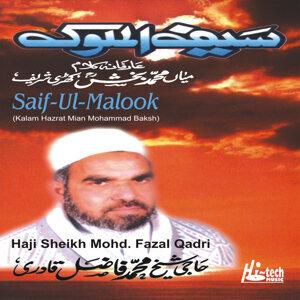 Haji Sheikh Mohd. Fazal Qadri 歌手頭像