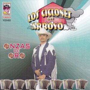 Los Ciclones del Arroyo 歌手頭像