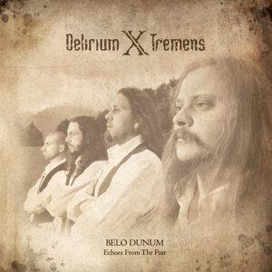 Delirium X Tremens 歌手頭像