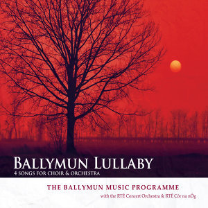 The Ballymun Music Programme 歌手頭像