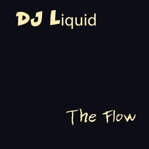 DJ Liquid 歌手頭像