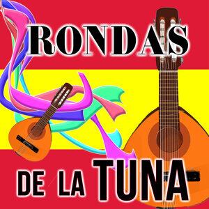 Tuna Estudiantil San Valentín de los Reyes 歌手頭像
