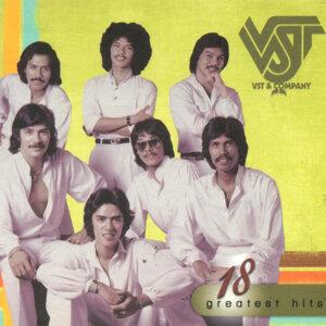 VST & CO. 歌手頭像
