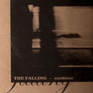 The Falling Upwards 歌手頭像