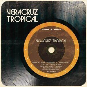 Veracruz Tropical 歌手頭像