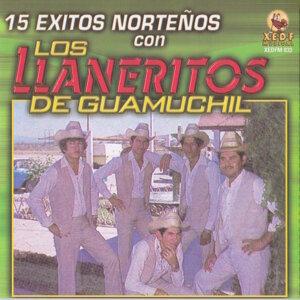 Los Llaneritos De Guamuchil 歌手頭像