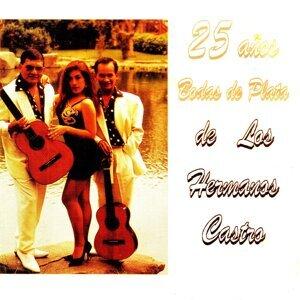 Los Hermanos Castro 歌手頭像