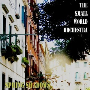 The Small World Orchestra 歌手頭像