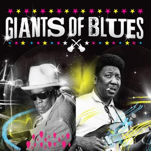 Muddy Waters & John Lee Hooker 歌手頭像