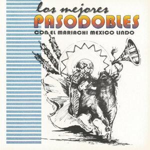Mariachi Mexico Lindo 歌手頭像
