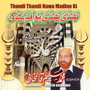 Muhammad Saleem Kaimkhani 歌手頭像