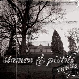 Stamen & Pistils
