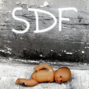 SDF 歌手頭像
