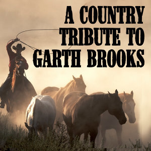 Brooks Stars Garth
