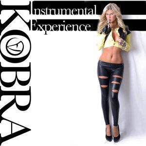 Kobra instrumentals 歌手頭像