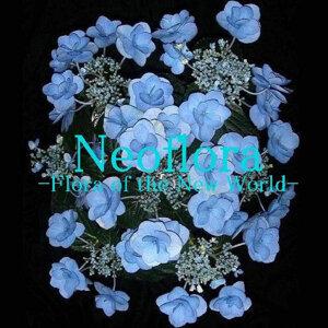 Neoflora 歌手頭像