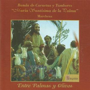 """Banda de Cornetas y Tambores """"María Santísima de la Palma"""" 歌手頭像"""