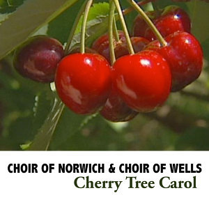 Choir of Norwich, Choir of Wells 歌手頭像