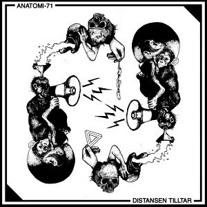 Anatomi-71