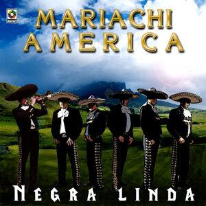 Mariachi América Real 歌手頭像