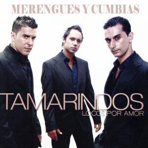 Tamarindos 歌手頭像