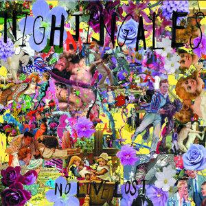The Nightingales 歌手頭像