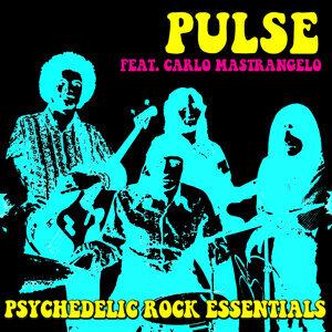 Pulse feat. Carlo Mastrangelo 歌手頭像