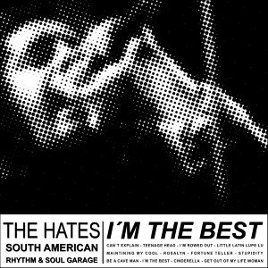 The Hates - South American Rhythm And Soul Garage 歌手頭像
