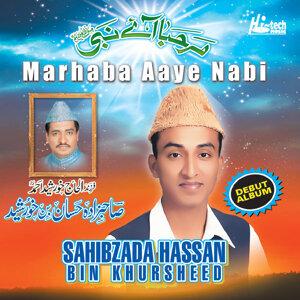 Sahibzada Hassan Bin Khursheed 歌手頭像