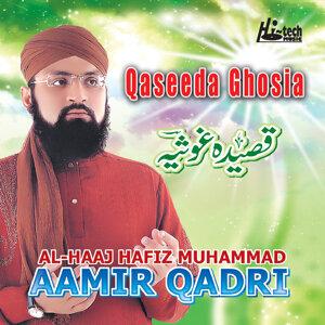 Al-Haaj Hafiz Muhammad Aamir Qadri 歌手頭像