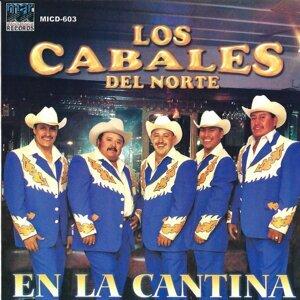 Los Cabales 歌手頭像