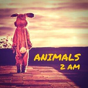 Animals 歌手頭像
