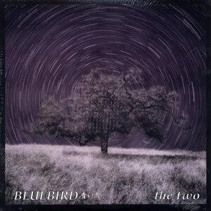 Bluebird 歌手頭像