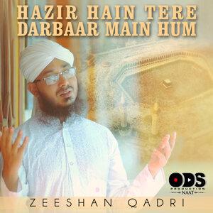 Zeeshan Qadri 歌手頭像