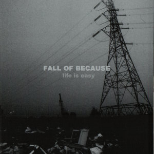 Fall Of Because 歌手頭像