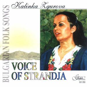 Kalinka Zgurova 歌手頭像
