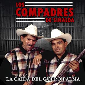 Los Compadres de Sinaloa 歌手頭像