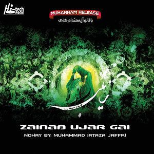 Muhammad Irtaza Jaffri 歌手頭像