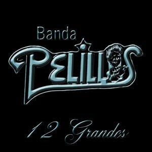 Banda Pelillos 歌手頭像