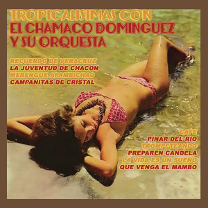 Chamaco Domínguez 歌手頭像