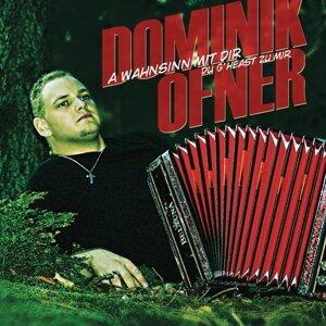 Dominik Ofner 歌手頭像