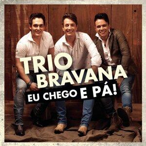 Trio Bravana 歌手頭像