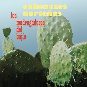 Los Madrugadores del Bajío 歌手頭像