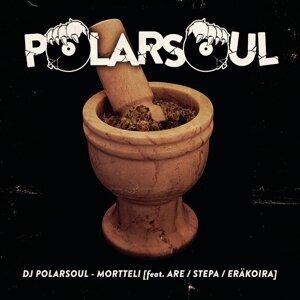 DJ Polarsoul feat. Are, Stepa & Eräkoira 歌手頭像