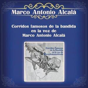 Marco Antonio Alcalá 歌手頭像