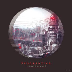 Eruca Sativa 歌手頭像