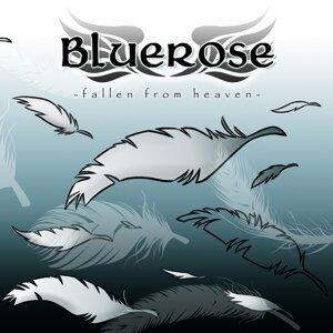 Bluerose 歌手頭像